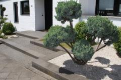 Pflegeleichte Gartenanlagen