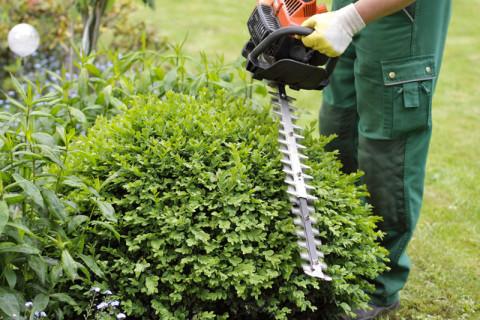 Wir bringen Ihren Garten in Form